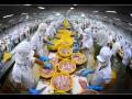 Mở rộng các thị trường xuất khẩu thủy sản