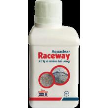 - Aquaclear Raceway