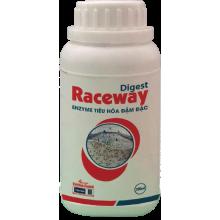 - Digest raceway