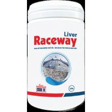 - Liver Raceway