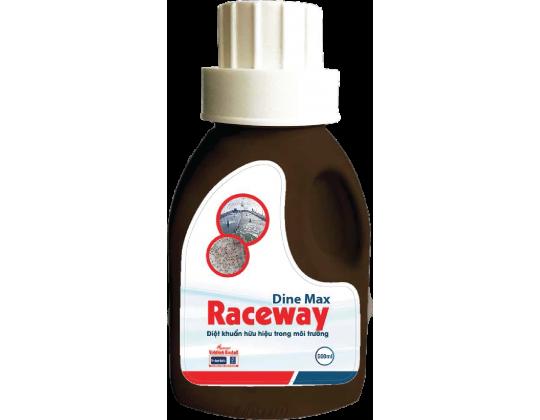 Dine max Raceway