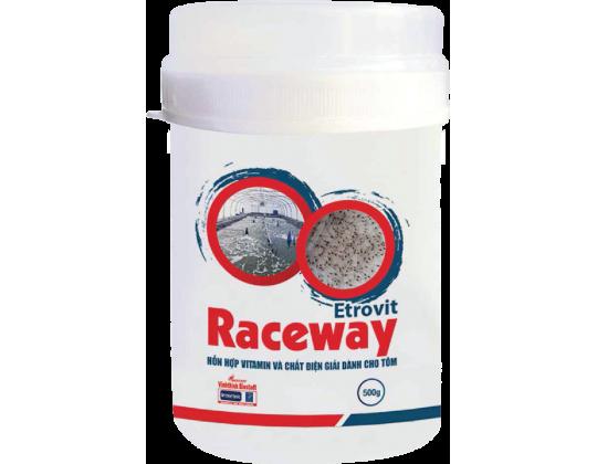 Etrovit Raceway