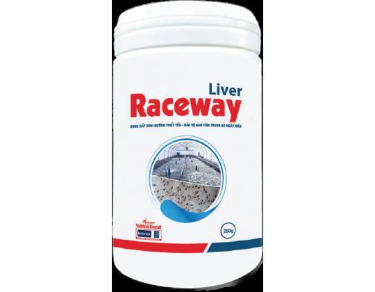 Liver Raceway