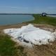 Công dụng của muối trong nuôi thủy sản nước ngọt - Phần 2