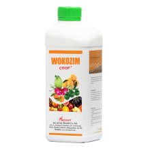 - WOKOZIM lỏng chuyên dùng cho cây ăn trái