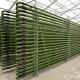 Công nghệ sản xuất vi tảo ứng dụng trong các trại sản xuất giống