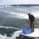 Ứng dụng kỹ thuật biofloc (BFT) vào nuôi tôm thâm canh