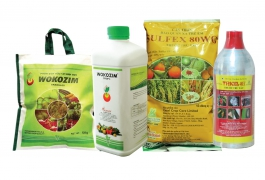 Phân bón hữu cơ sinh học Wokozim trên cây trồng
