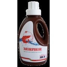 - MORPHOR