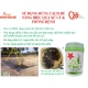 Sử dụng vi sinh đúng cách để vượt qua vụ nuôi tôm mùa hạn mặn và nắng nóng kéo dài